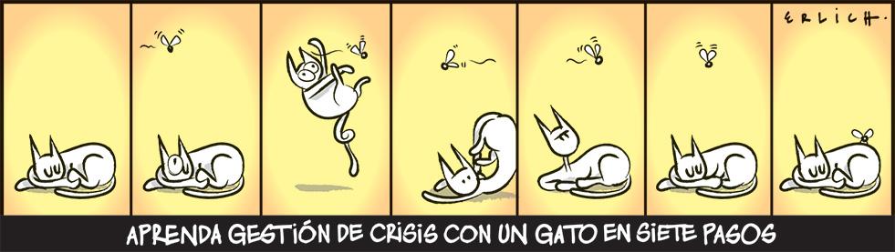 Gestión de crisis